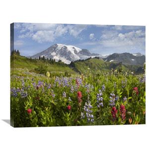 Paradise Meadow And Mount Rainier, Mount Rainier National Park, Washington By Tim Fitzharris, 24 X 32-Inch Wall Art