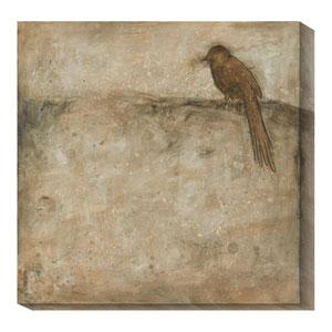 Bird Study I by Casey Matthews: 20 x 20 Canvas Giclees