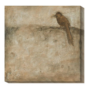 Bird Study I by Casey Matthews: 36 x 36 Canvas Giclees