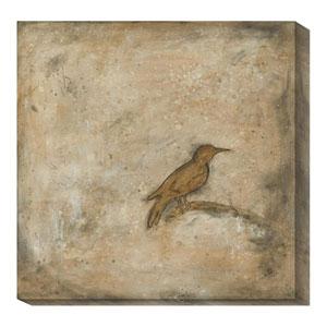 Bird Study II by Casey Matthews: 20 x 20 Canvas Giclees
