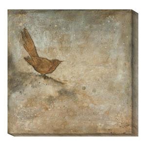 Bird Study III by Casey Matthews: 20 x 20 Canvas Giclees