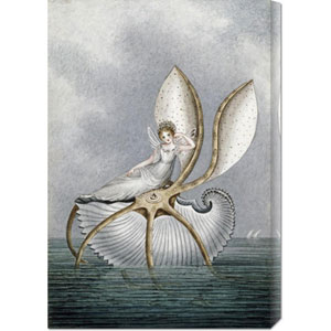 A Fairy Resting on a Shell by Amelia Jane Murray: 20.4 x 30 Canvas Giclees, Wall Art