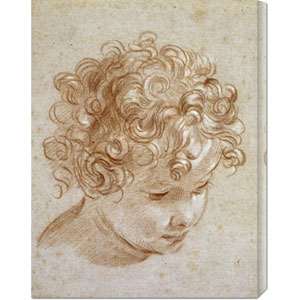 The Head of a Child by Niccolo Berrettoni: 22.8 x 30 Canvas Giclees, Wall Art