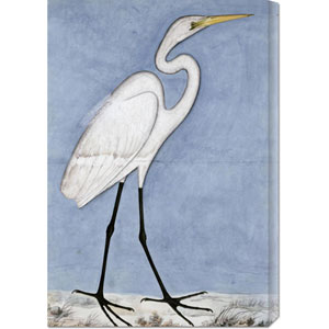 Great Egret: 20.3 x 30 Canvas Giclees, Wall Art