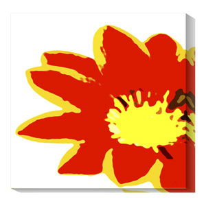 Pop flower VII by Michael Banks: 20 x 20 Canvas Giclees