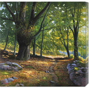 Luce Nel Bosco by Adriano Galasso: 24 x 24 Canvas Giclees, Wall Art