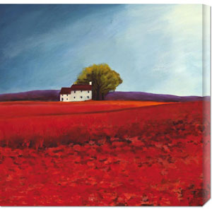 Field of Poppies by Philip Bloom: 24 x 24 Canvas Giclees, Wall Art