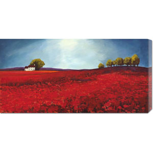 Field of Poppies by Philip Bloom: 36 x 18 Canvas Giclees, Wall Art
