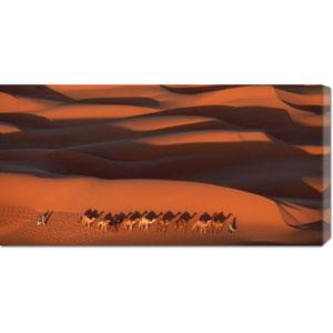 Camels Crossing Amber Dunes, Mauritania by Yann Arthus-Bertrand: 36 x 18 Canvas Giclees, Wall Art