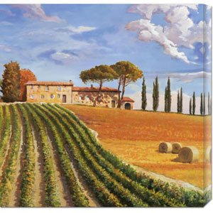 Colline Toscane by Adriano Galasso: 24 x 24 Canvas Giclees, Wall Art