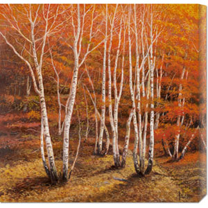 Bosco di Betulle II by Adriano Galasso: 24 x 24 Canvas Giclees, Wall Art