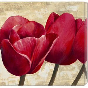 Red Tulips by Cynthia Ann: 24 x 24 Canvas Giclees, Wall Art