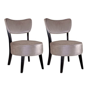 Antonio Grey Velvet Accent Chair, Set of 2
