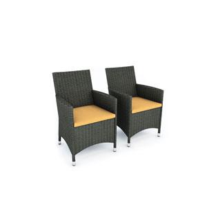 Cascade River Rock Black Weave Two Chair Set