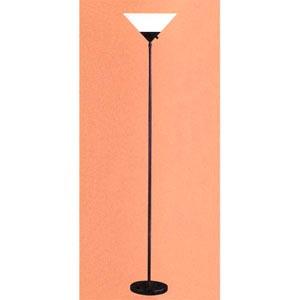 Pisces Torchiere Floor Lamp