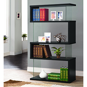 Black and Transparent Asymmetrical Snaking Bookcase