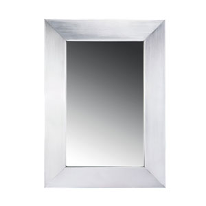 Noahs Brushed Stainless Steel Mirror