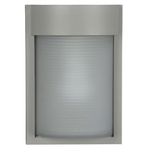 Destination Satin One-Light Outdoor Wall Sconce
