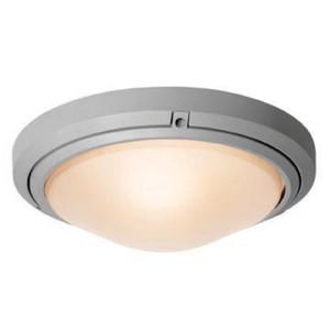 Oceanus Satin 5.5-Inch High LED Flush Mount