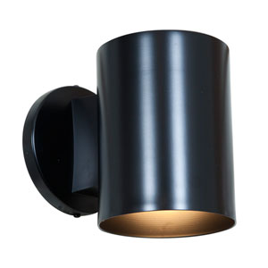 Poseidon Black One-Light Outdoor Wall Mount
