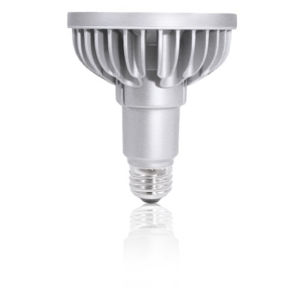 Silver LED PAR30L Standard Base Soft White 1230 Lumens Light Bulb