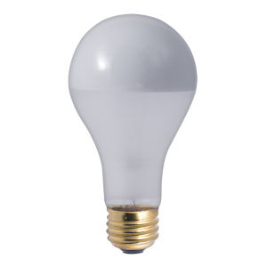 Frost Silver Bowl A21, E26 2700K 100W Incandescent Bulb, Pack of Eight