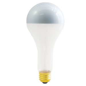 Frost Silver Bowl Incandescent PS25 Standard Base Warm White 1500 Lumens Light Bulb