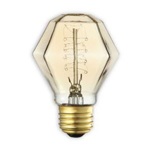 40W E26 Incandescent Antique Spiral Bulb