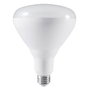 20W BR40 E26 LED Soft White Bulb