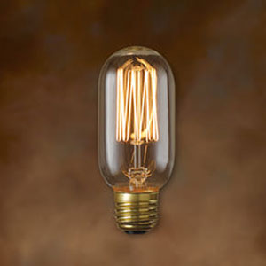 40W T14 E26 Nostalgic Edison Thread Filament Warm White Bulb