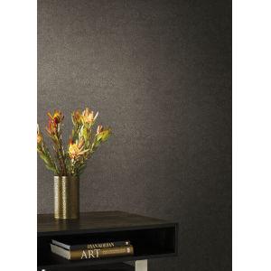 Antonina Vella Elegant Earth Dark Beige Weathered Textures Wallpaper