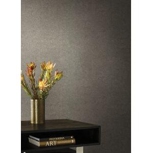 Antonina Vella Elegant Earth Light Gray Weathered Textures Wallpaper