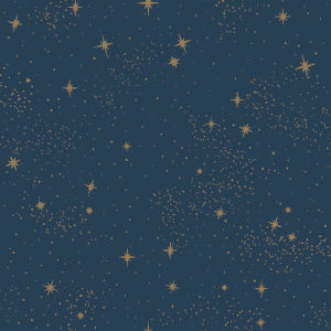 Upon A Star Navy Peel and Stick Wallpaper