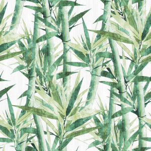 Lucky Bamboo Green And White Peel and Stick Wallpaper