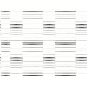 Stripes Resource Library Black and White Dashing Stripe Wallpaper
