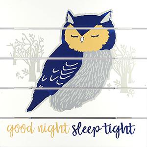 Good Night Sleep Tight Plank Art