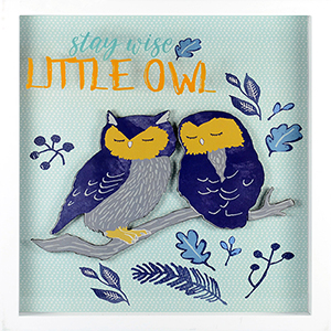 Stay Wise Little Owl Shadowbox