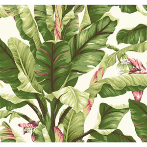 Ashford House Tropics White and Green Banana Leaf Wallpaper