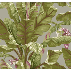 Ashford House Tropics Grey and Green Banana Leaf Wallpaper