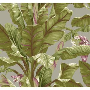Ashford House Tropics Grey and Green Banana Leaf Wallpaper
