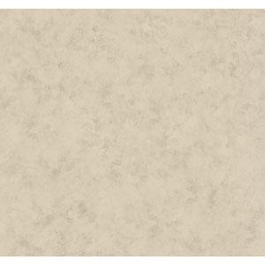 Antonina Vella Gray Kashmir Plaster Glaze Wallpaper