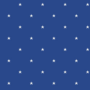 Room To Grow Blue and White Stars Wallpaper