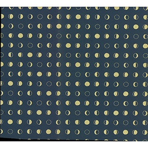 Culture Club Navy Blue and Gold Circle Wallpaper