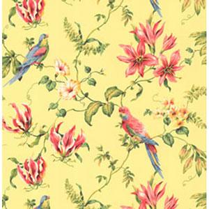 By The Sea Tropical Bird Wallpaper