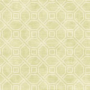 Coastal Trellis Lime Wallpaper