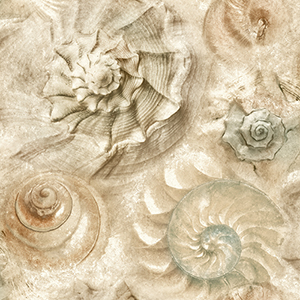 Opulent Shell Sand Wallpaper