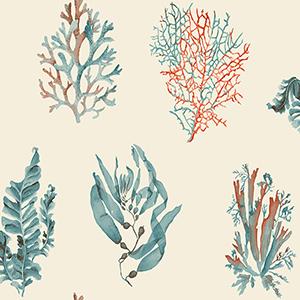 Seaweed Cream Wallpaper