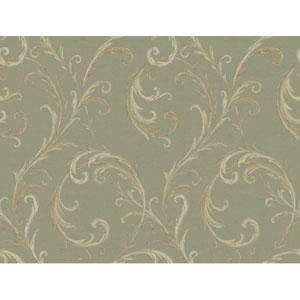 Georgetown Gallery Slender Acanthus Scroll Background Wallpaper