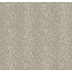 Candice Olson Modern Nature Grey Canopy Wallpaper