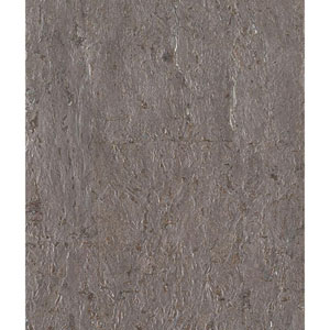Candice Olson Modern Nature Taupe and Silver Cork Wallpaper